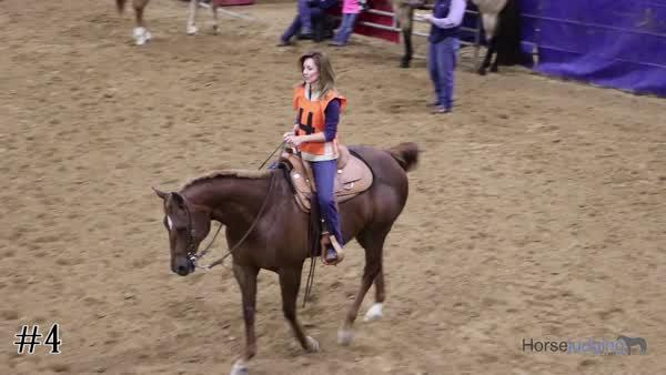 2017 2017 San Antonio Horse