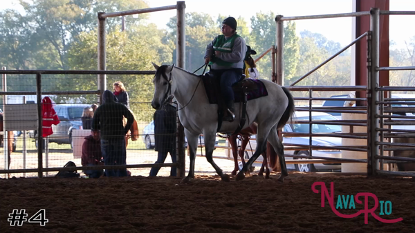 2019 2019 Navario Horse Judging Mini-Contest