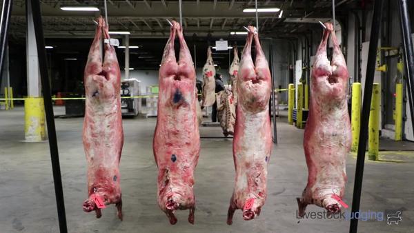 2020 San Antonio Meats